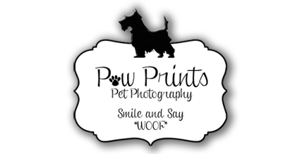 Paw Prints Pet Photography logo
