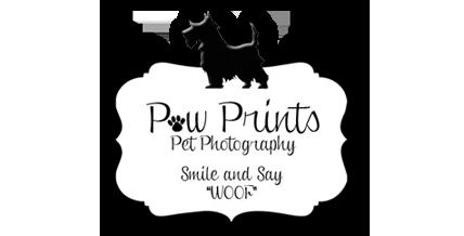 Paw Prints Pet Photography logo
